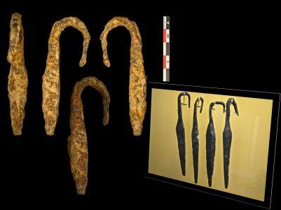 (23) Dientes de rastrillo (Dessobriga). Derecha: ejemplares del Musée Archéologique National de Saint-Germain-en-Laye.